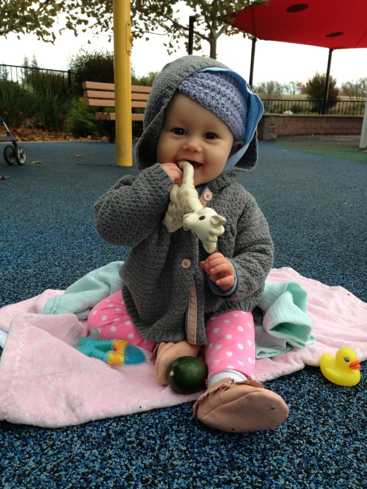 Cute photos of Harlow, just because!